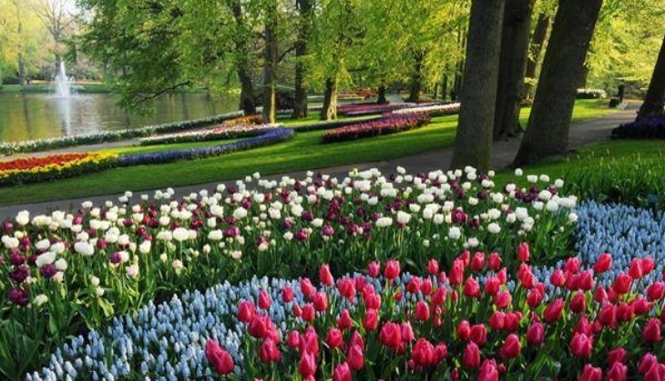Holland day1 keukenhof tulips garden liesse for Jardines de keukenhof